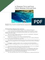 Enchanted River Hinatuan Trivia and Facts