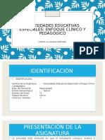 Necesidades Educativas Especiales PRESENTACION DE ASIGNATURA.pptx