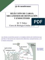 Clase_16_Flujo_Vesicular_Exocitosis_y_Endocitosis.pdf