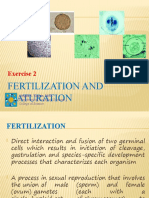 Fertilization and Maturation