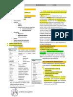 PDF Epilepsia