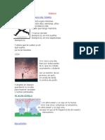Album de Poemas Adivinanzas Canciones y Rondas