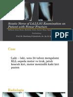 Schiatic Nerve of L4,L5,S1 Examination