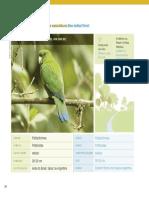 37_pdfsam_guia_de_aves_mataatlantica_wwfbrasil.pdf