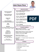Curriculum Marlon PDF