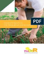 Investimentos de Pequena Dimensão.pdf