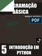 Programação Básica - Introdução Em Python