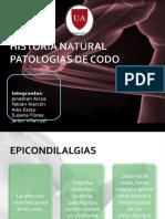 Historia Natural Codo