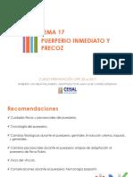 Presentación tema 17.pdf