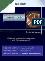EMBRIO2016 (1)