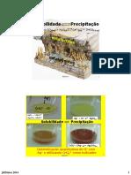 Parte_1_-_precipitacao-complexacao_2015B.pdf