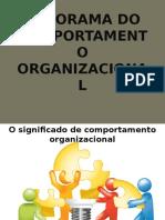 Cap. 1 - Panorama Do Comportamento Organizacional