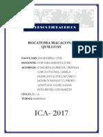BOCATOMA MACACONA QUILLOAY