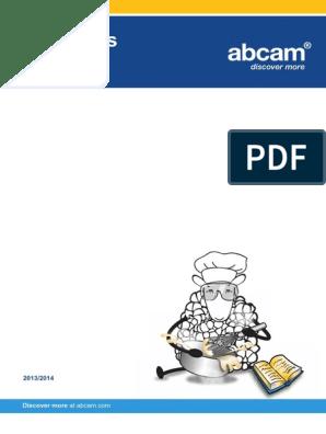 Abcam Protocol Book | Antibody | Immunoglobulin G