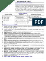 JOB DESCRIPTION- PLANTILLA-Programación y Control de Proyectos