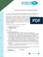 Articles-19463 Recurso Docx