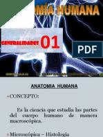 Teoría 1-2 Anatomía Humana - Generalidades -Osteología Upsjb- Dr. Johnny Fernando Quiñones Jáuregui