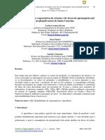 Custos de Produção, Expectativas de Retorno e de Riscos Do Agronegócio Mel Em SC