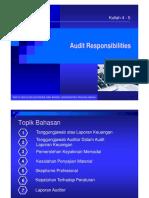 3. Audit Responsibilities