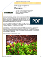 European Spruce Ranges, And Commentary on Picea Spp