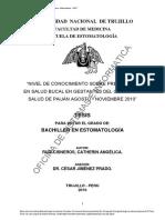 RuizCisneros_C (1).pdf