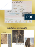 Evolução - Especiação - Mutação (1)