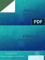 01 Moléculas biológicas