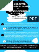 teoria curricular expo.pptx