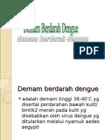 Penyuluhan DBD Gw