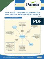 Psicologia Sem R3