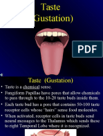 Module 21 - Taste