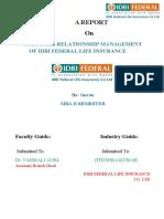 Anchal Report