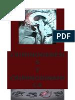 Criminogenesis y Criminodinamica