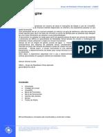 grva-unreal COPPE.pdf