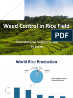 Weed Control in Rice