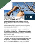 Reguli de Aur Pentru Tăierea Pomilor Fructiferi