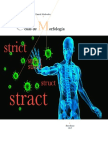 EL radical STRCT en Morfología