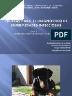 Enfermedades Infecciosas 2-3