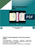 Gluconeogénesis.pptx