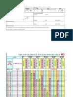 Formato Anual - Copia (3)