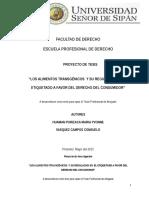 Modelo de Esquema Proyecto de Investigacion