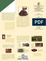 Producción de Café en Colombia