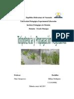 Totipotencia y propagación vegetativa