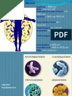 Mikrobielle Besiedelung Des Menschen (1)