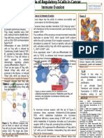 Poster T-reg Cells and Cancer