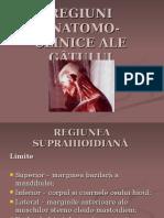 Regiuni Anatomo-clinice Ale Gâtului