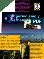 Fotoperiodismo y vernalización