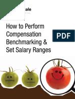Whitepaper Mofu Perform Compensation Benchmarking