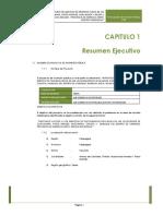 Pip Telecomunicaciones 21-12-16 Ultimo 1
