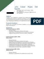 CV Julio Cesar Rojas Del Águila